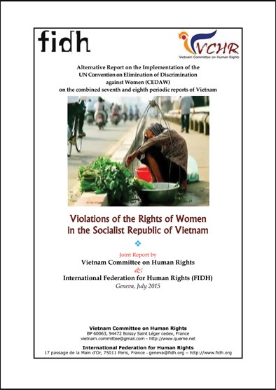 Alternative Report on the Implementation of the UN Convention on Elimination of Discrimination against Women (CEDAW) on the combined seventh and eighth periodic reports of Vietnam